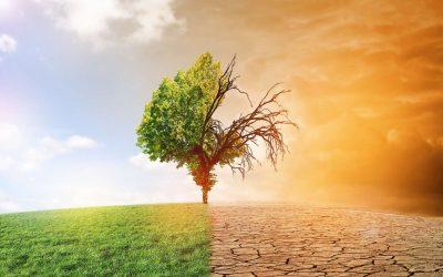 Agir en conscience et avec bienveillance face au réchauffement climatique